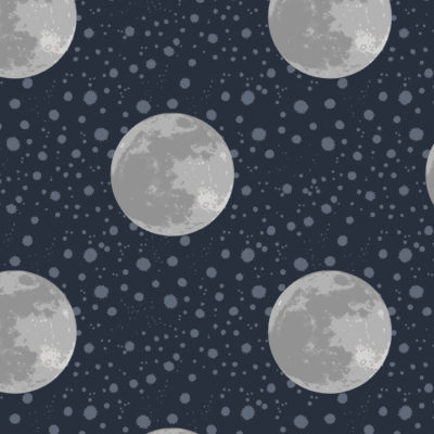 Moon On Midnight Bolt End