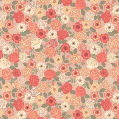Peach Wild Rose