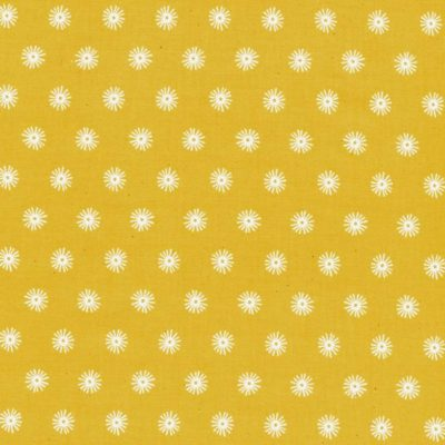 Sea Urchin Sunshine