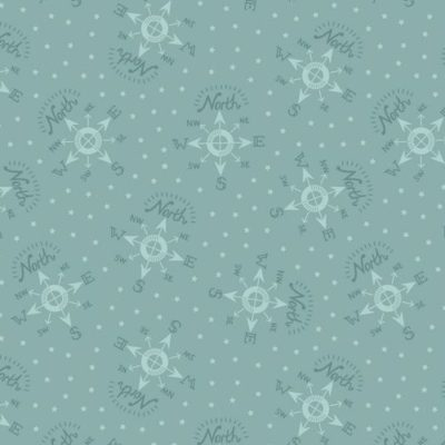 North Pole Compass Icy Blue