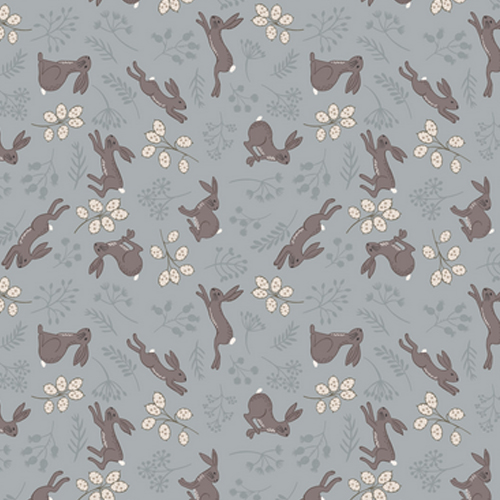 Hare Grey