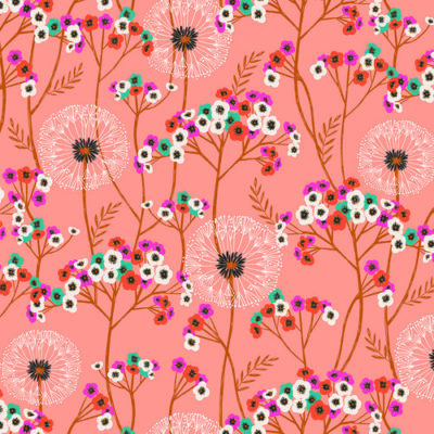 Dandelions Peach